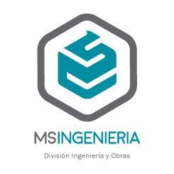 Ingeniería Maxiseguridad